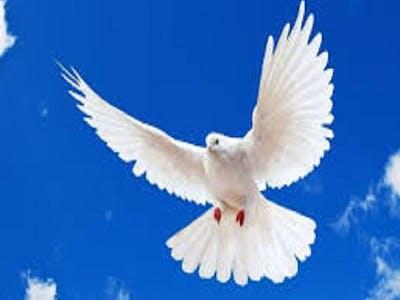 True Friend Holy Spirit