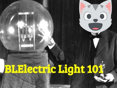 BLElectric Light 101