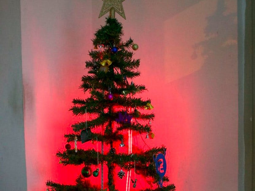 A Christmas Tree that Beats with Your Heart