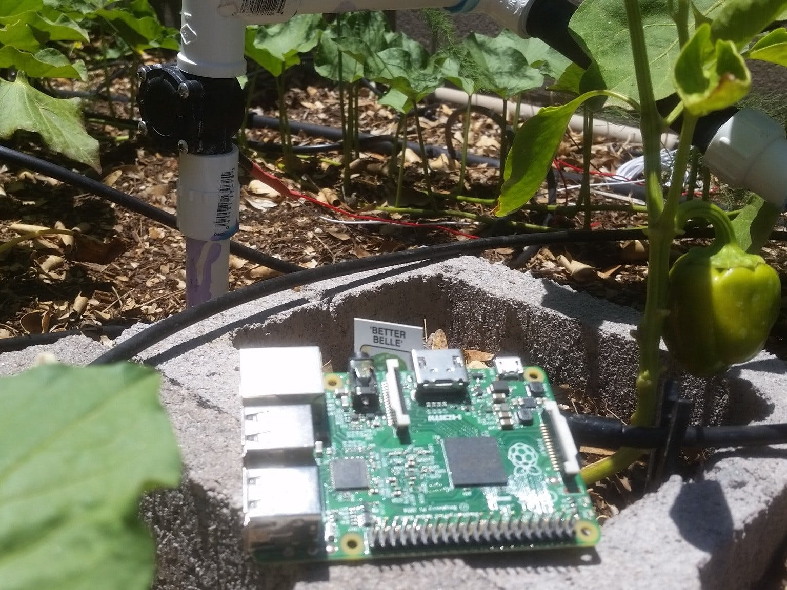Solar Powered, Remote Controlled, Smart Garden