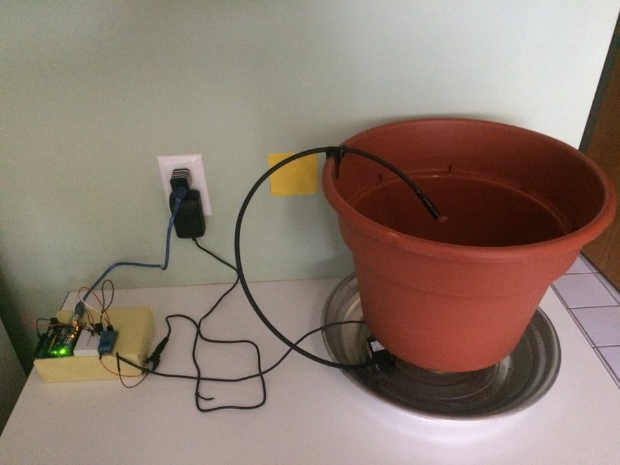 Automated Mung Bean Sprouts Growing Machine