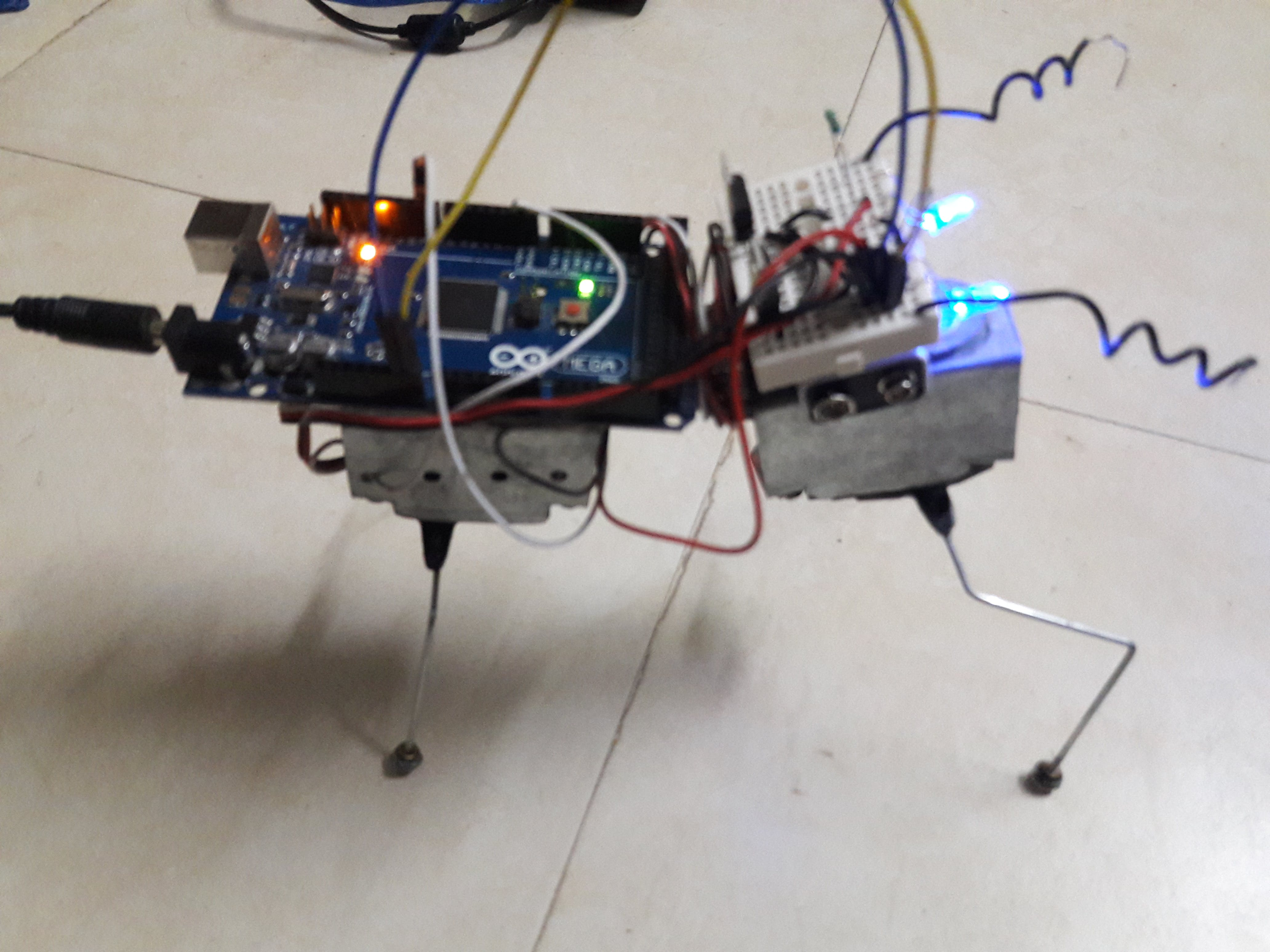 a project building a robot imitating an ant Pentagon project seeks to build autonomous to build algorithms such that a robot or machine can perceive the surrounding environment like a bird or an ant.