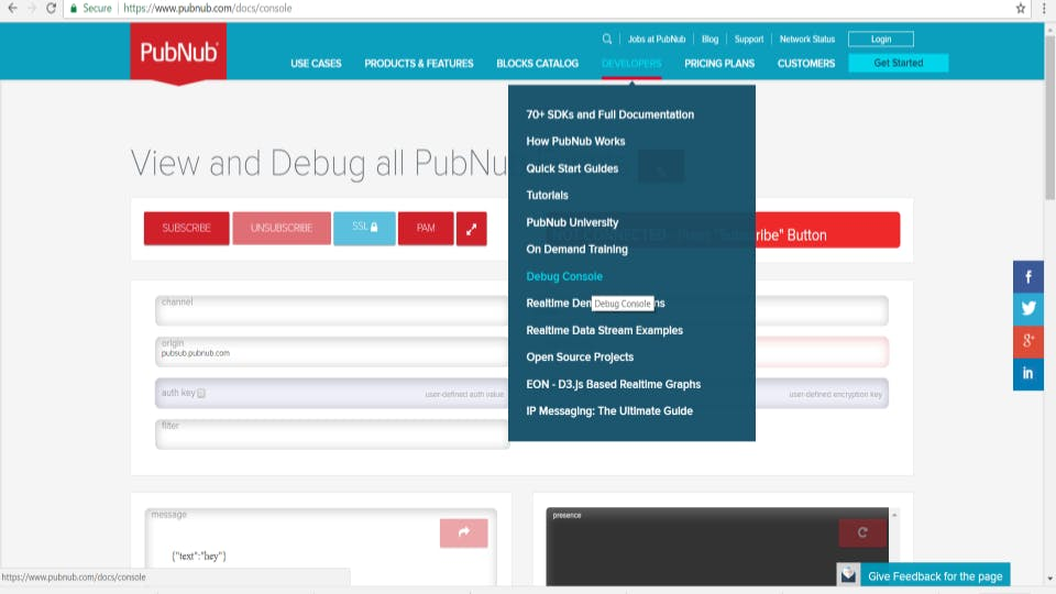 The PubNub Debug Console. A bit tricky to remember where it is.