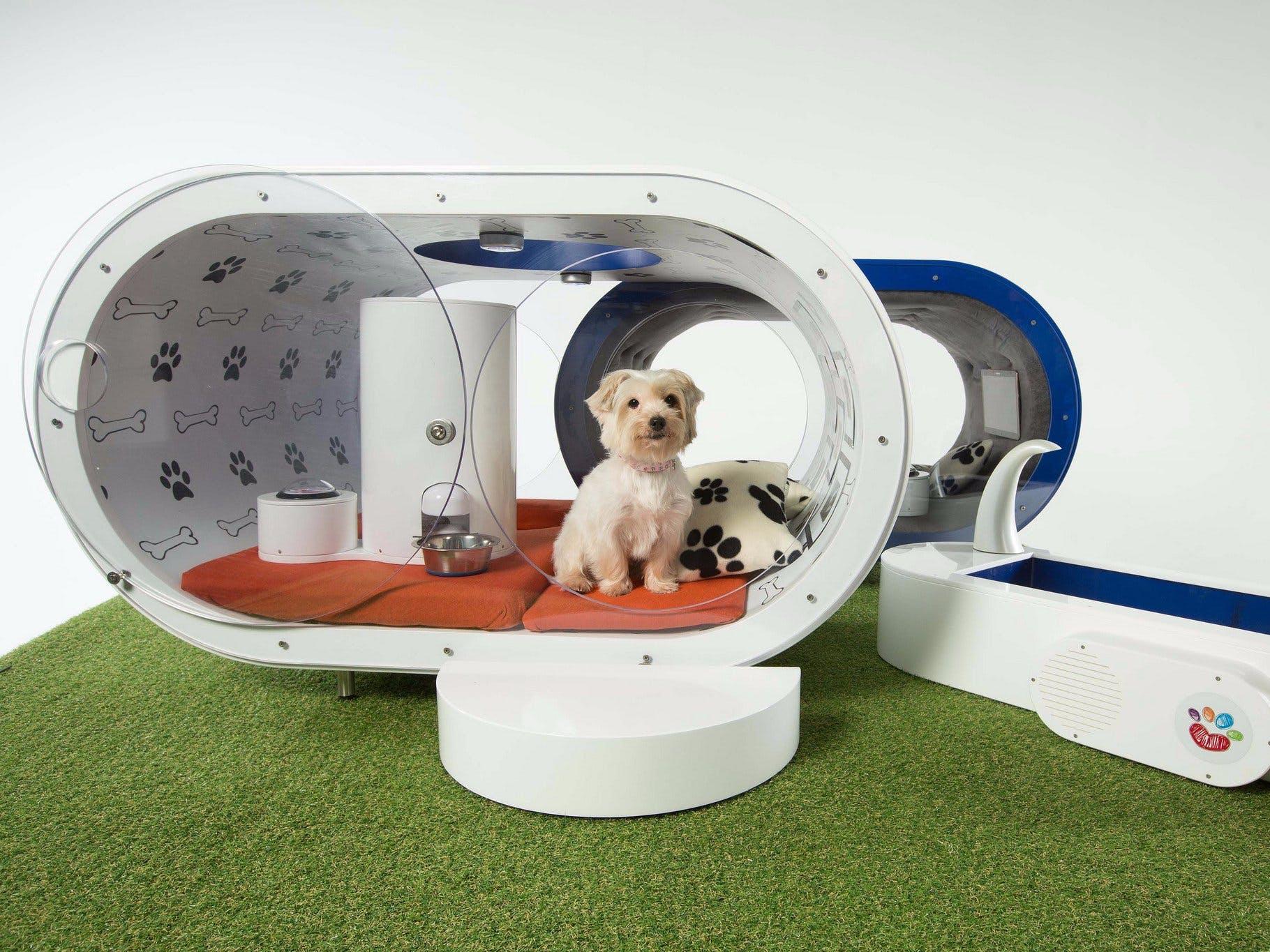 Smart Dog Watcher
