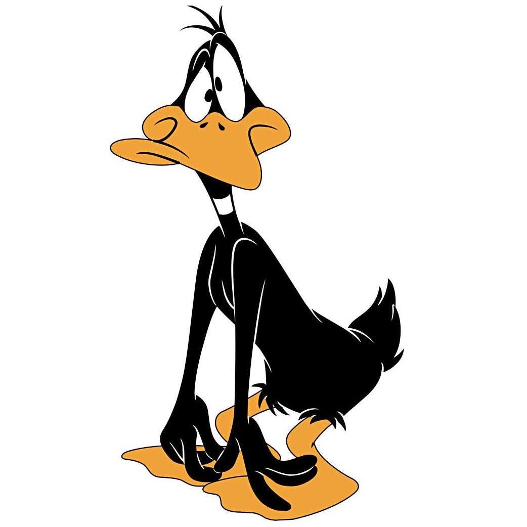 Daffy duck rk7uydf6jl