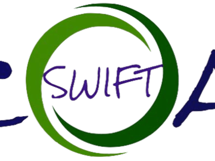 Swiftcoat – nanoparticle solutions and applicator