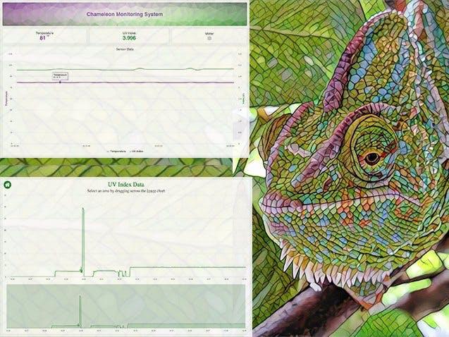 Chameleon Monitoring System