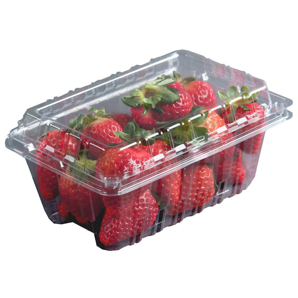 Wholesale berry containers