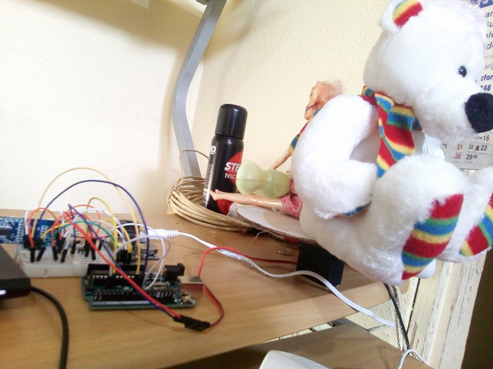 circuit and teddy bear