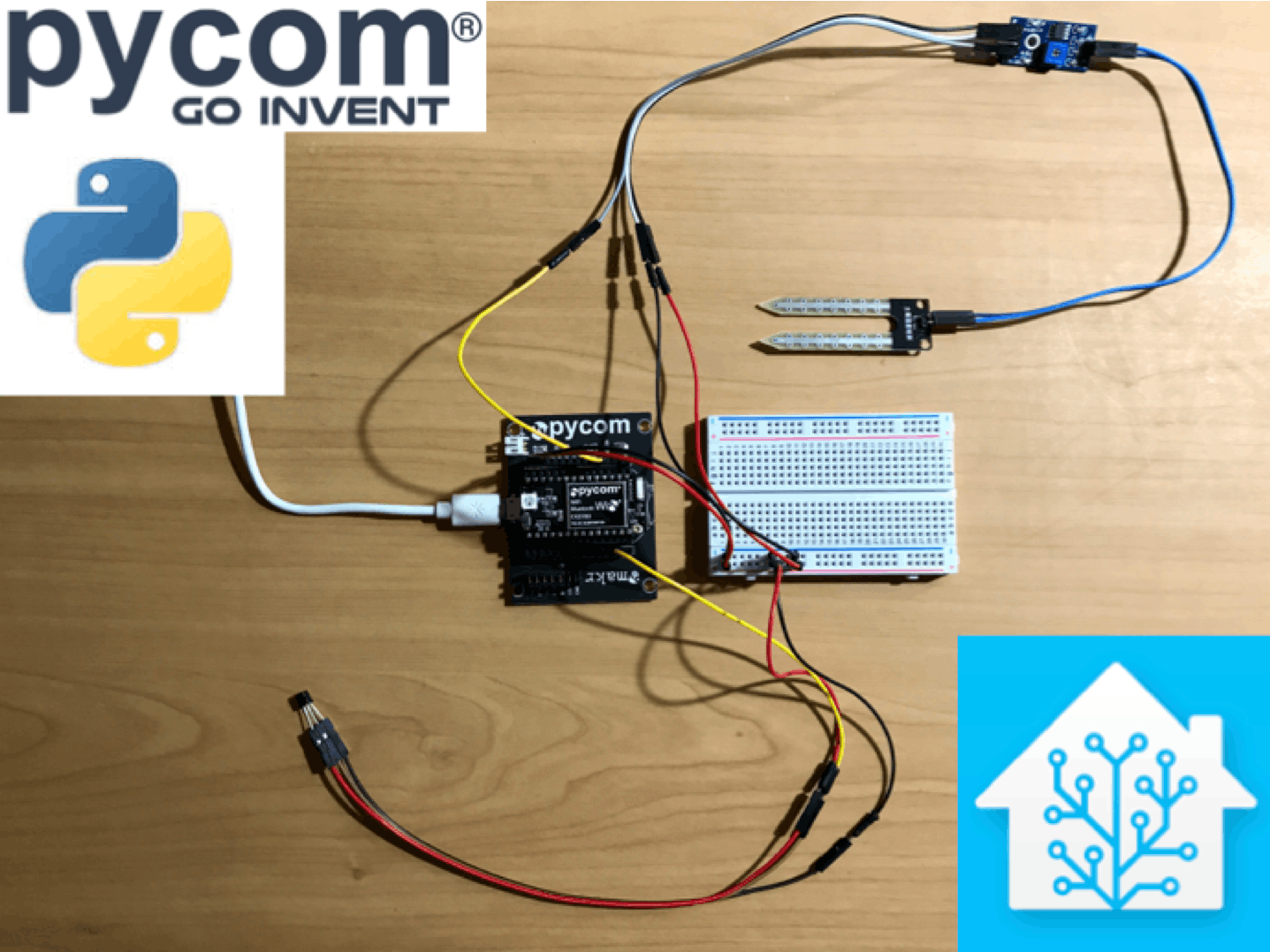 Micropython leak detector with home-automation integration