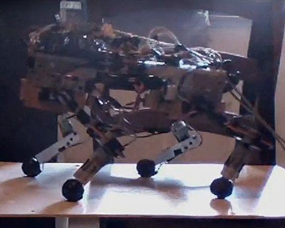 JQR Quadruped Autonomous Robot