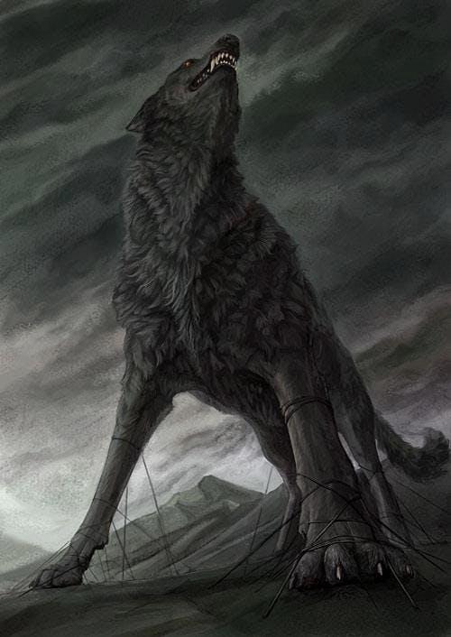 Lobo (25) oo6tjhzwcv