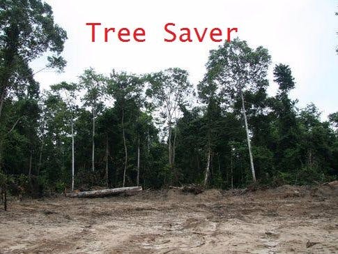 Tree Saver - A Real Time Logging Detection