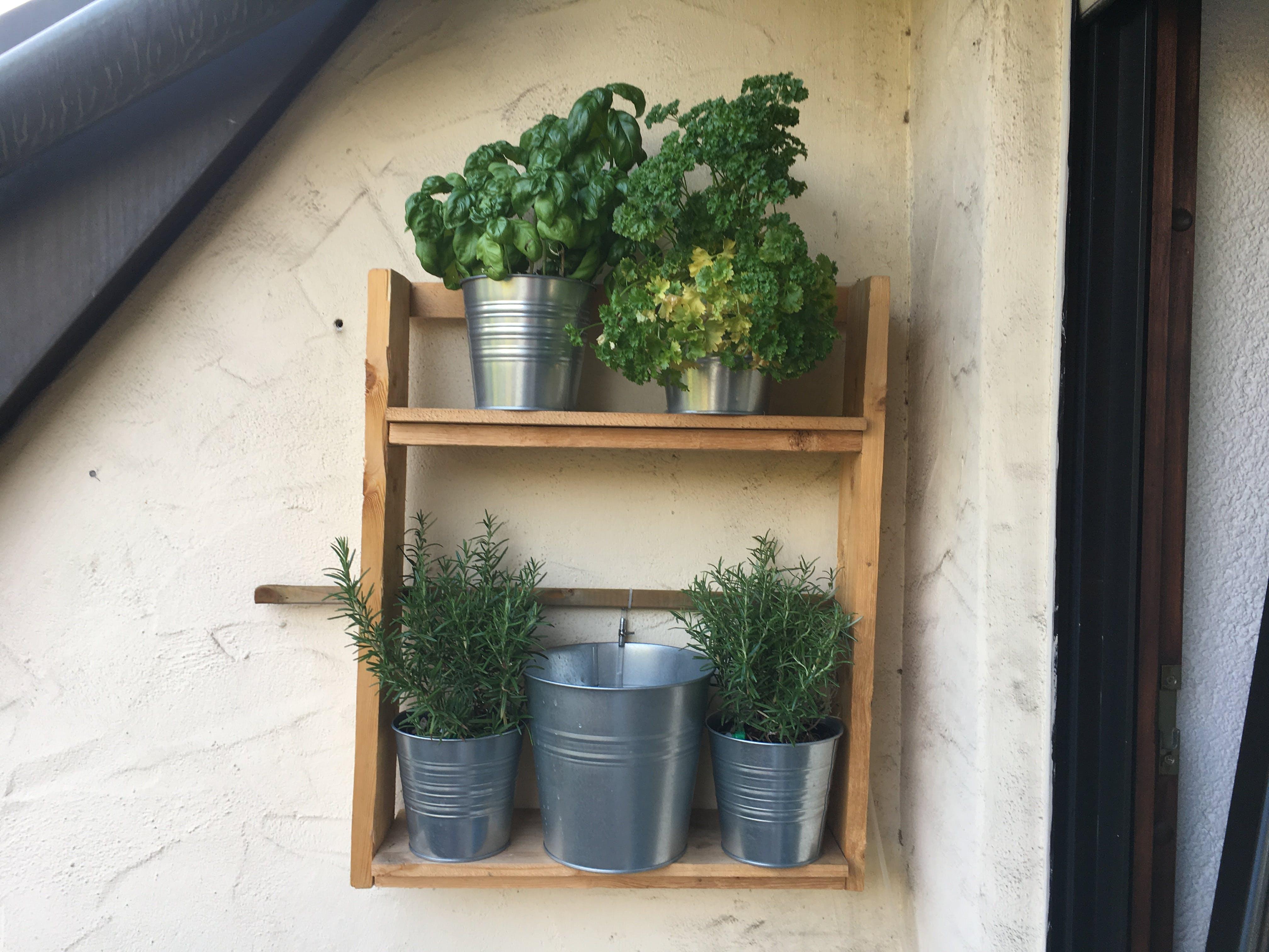 Picture 1: Hanging herbal garden