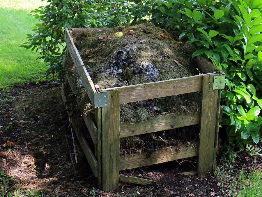 Compost Helper Alexa Skill