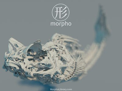 World's First 3D Crystal Engraving with MRI/CT Scan