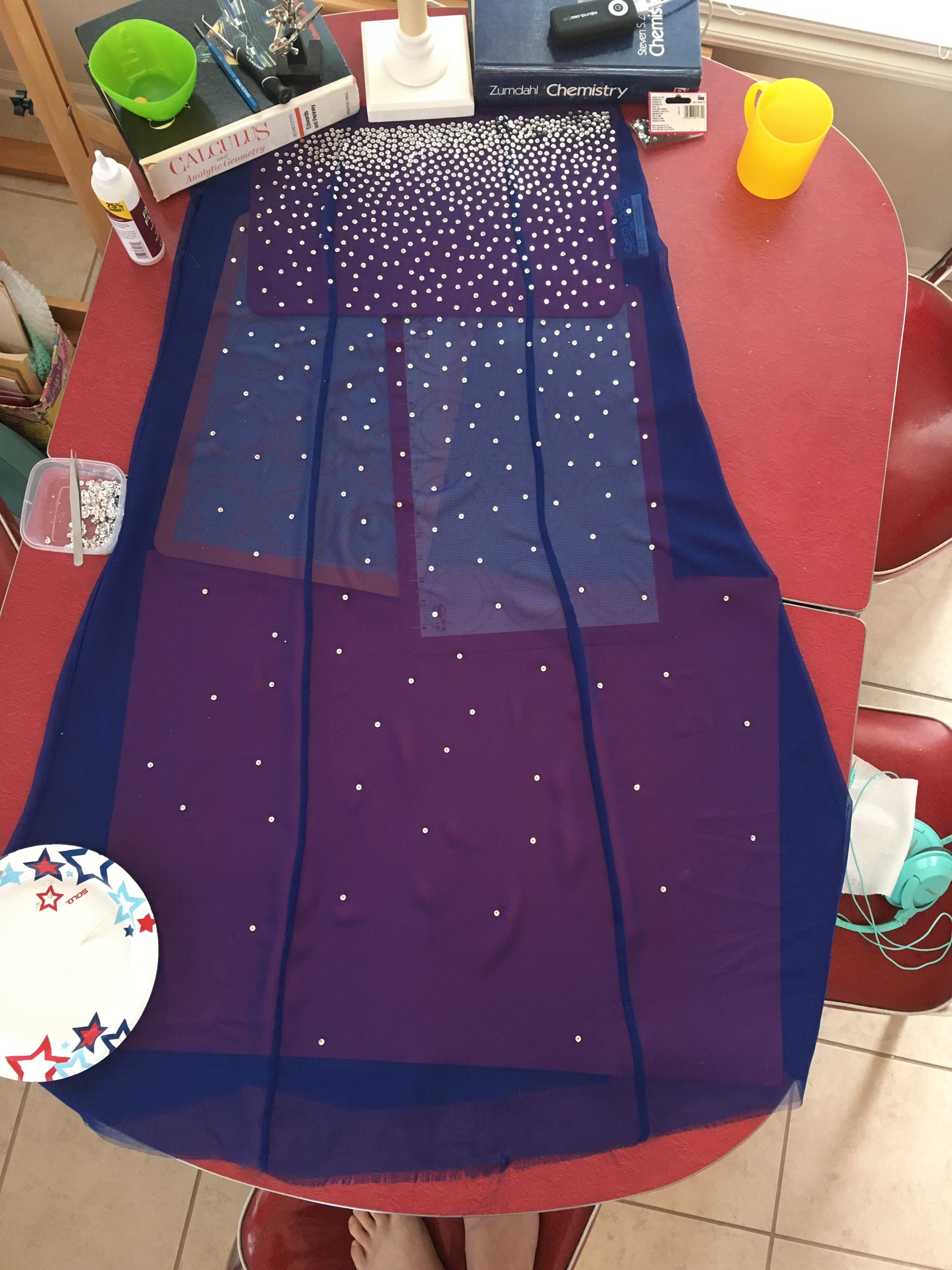It took 12 hours over the course of two days to glue all the sequins to the sheer