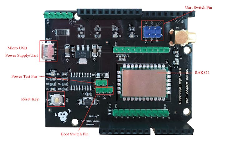 Rak811 module with some important pins marked