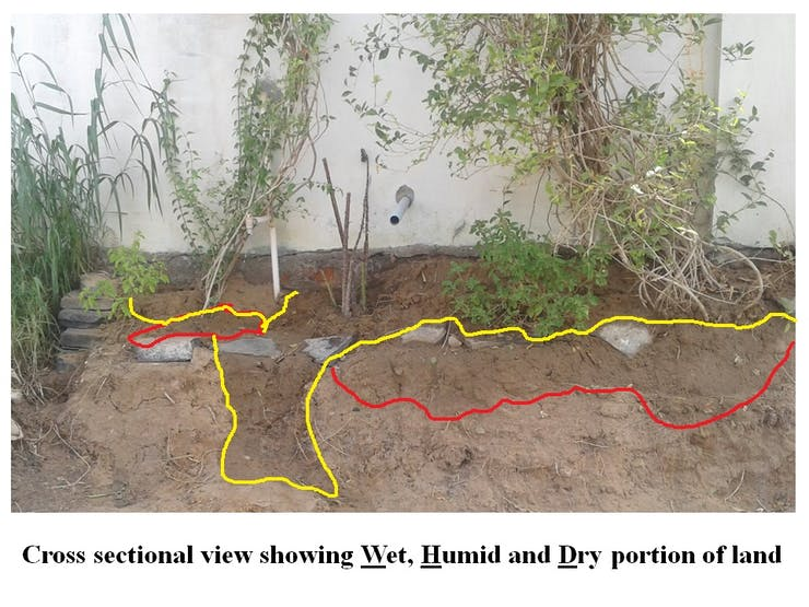 Figure 6: Cross section of soil showing Dry, Humid and Wet portion.