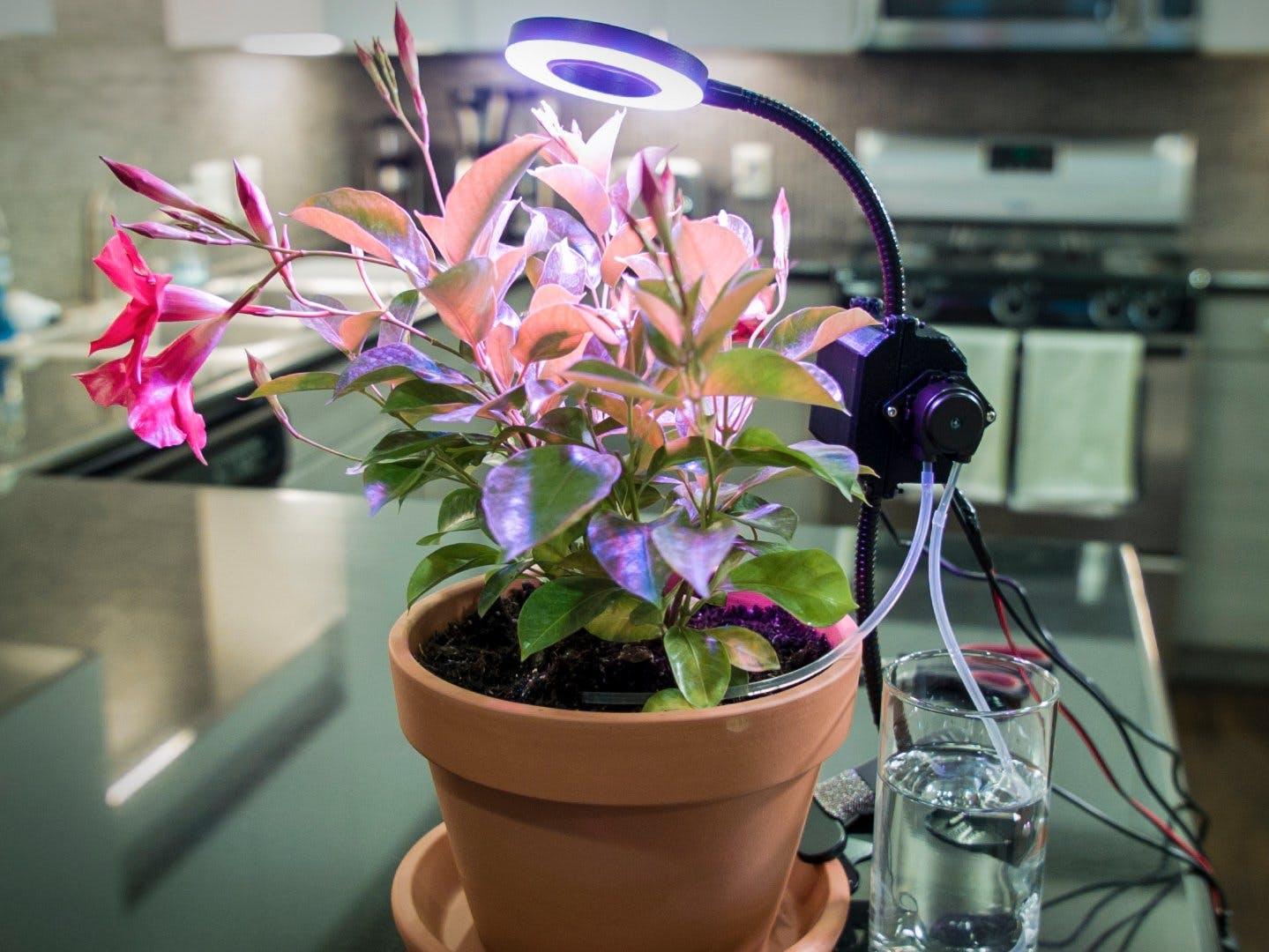 Automated Indoor Gardener