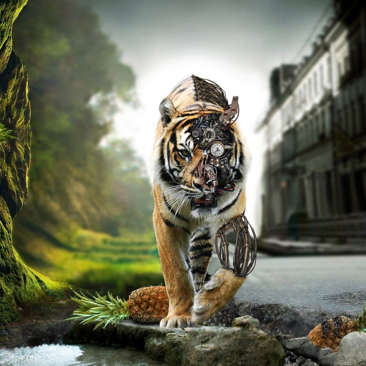 Wallpaper tiger robot robots wallpapers background large photo sxhxx5nieg