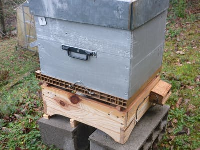 Beehive Monitoring and Tracking