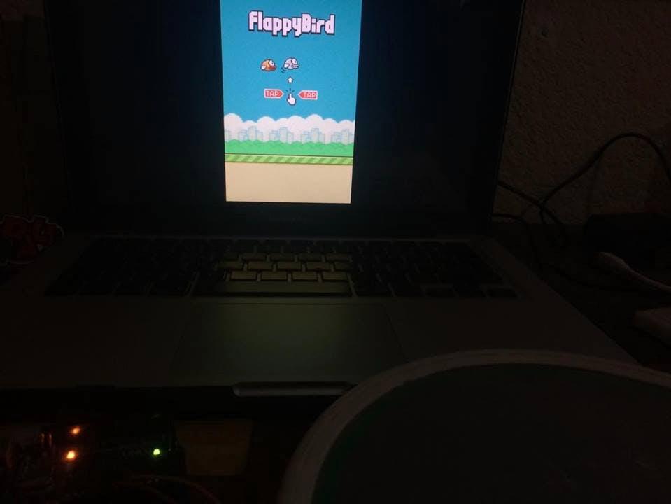 TappyBird