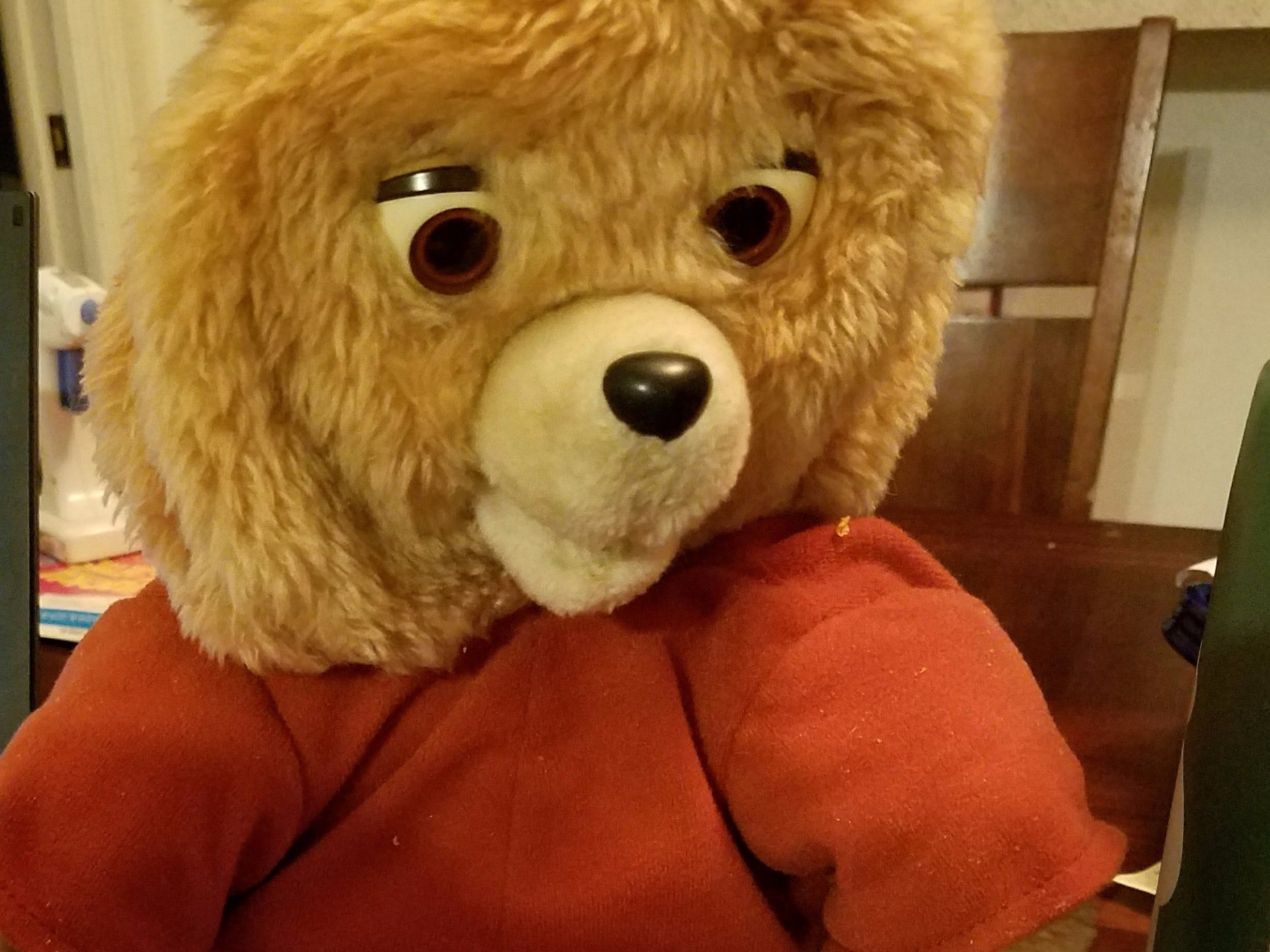 Puppet Mode Teddy Ruxpin