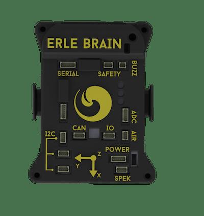 Erle-Brain