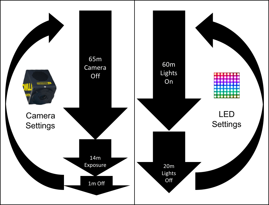 Simultaneous imaging and lighting loops