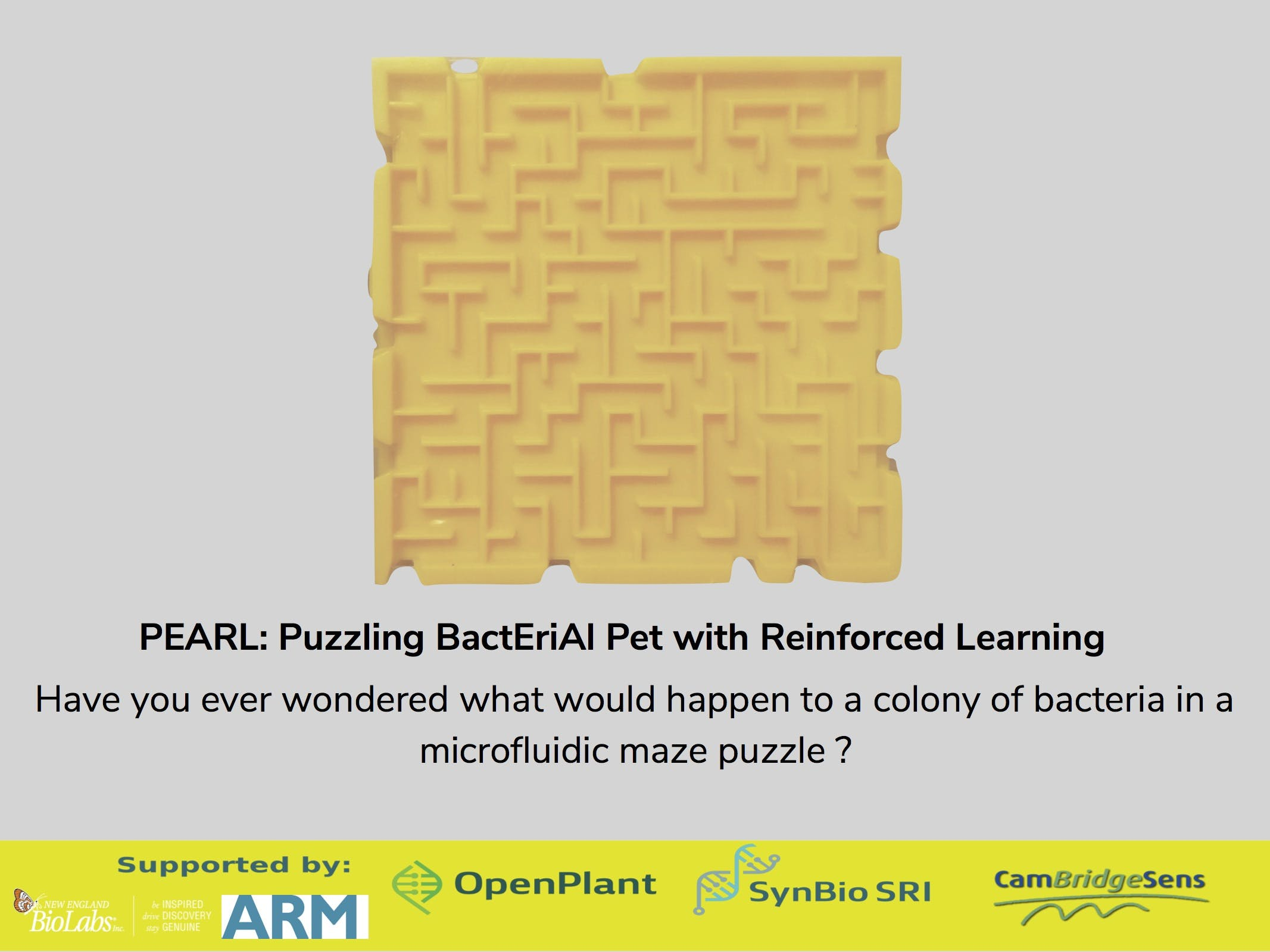 PEARL: Puzzling BactEriAl Pet With Reinforcement Learning