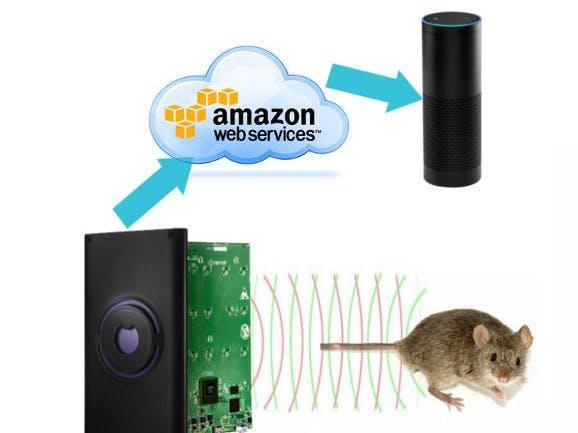 Walabot + Alexa: Critter Counter