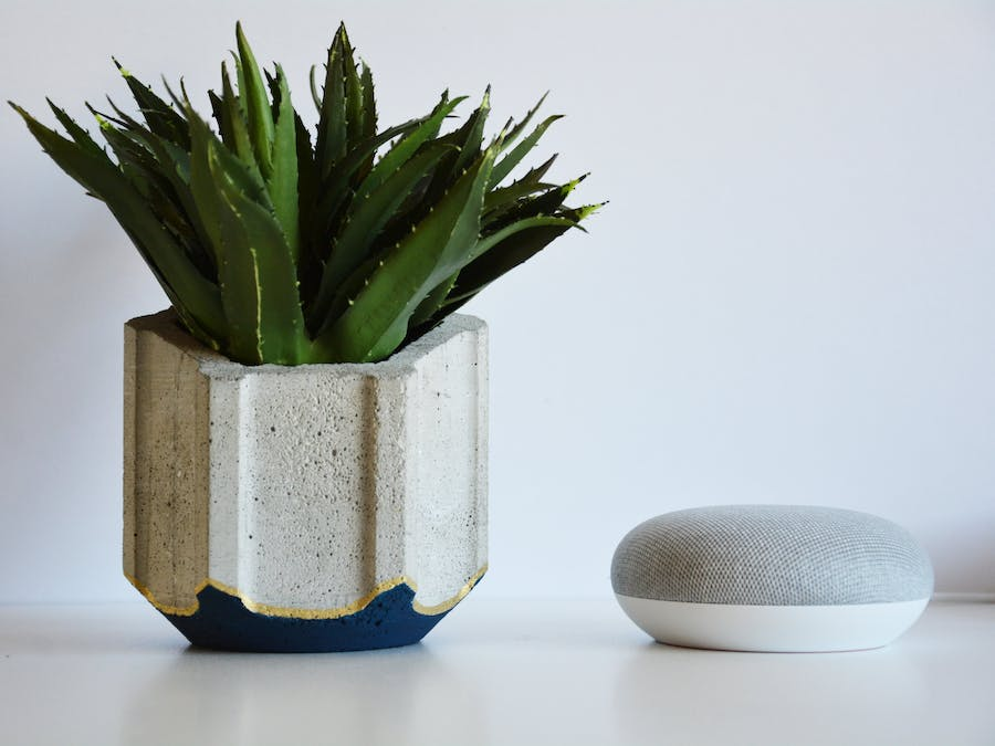 Concrete Planter - 3D Printing Build