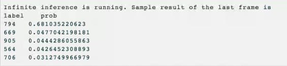 Inference Output