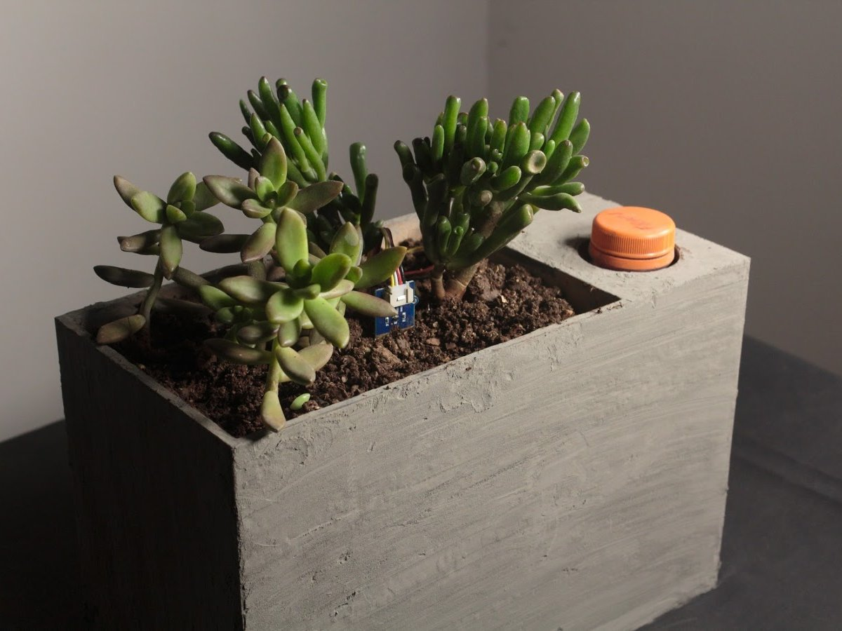 Sprout: Modern Indoor Self Watering Planter