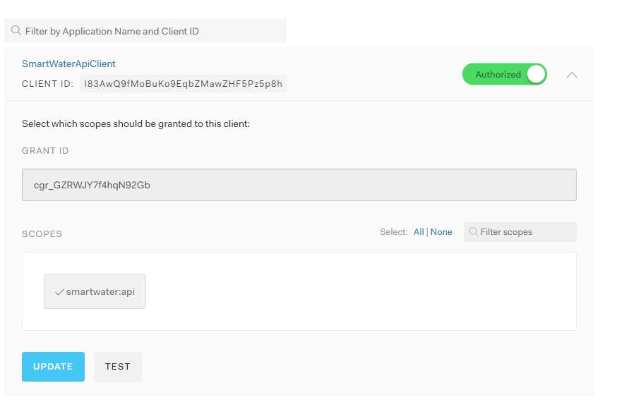 Authorize client and include custom scope