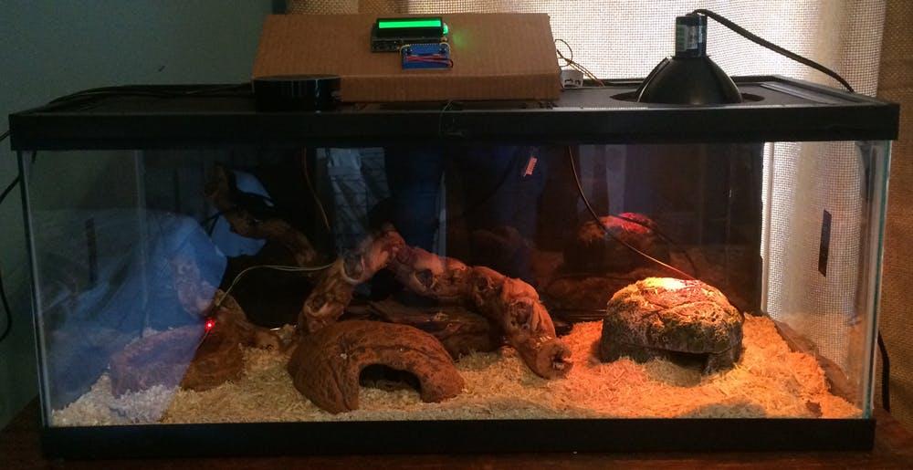 My son's snake terrarium.