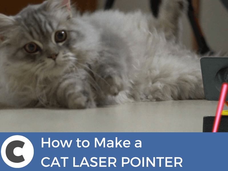 How to Make a Cat Laser Pointer
