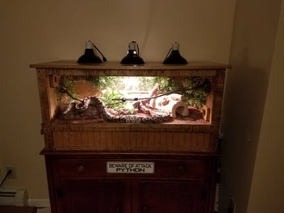 Automated Snake Enclosure with Camera