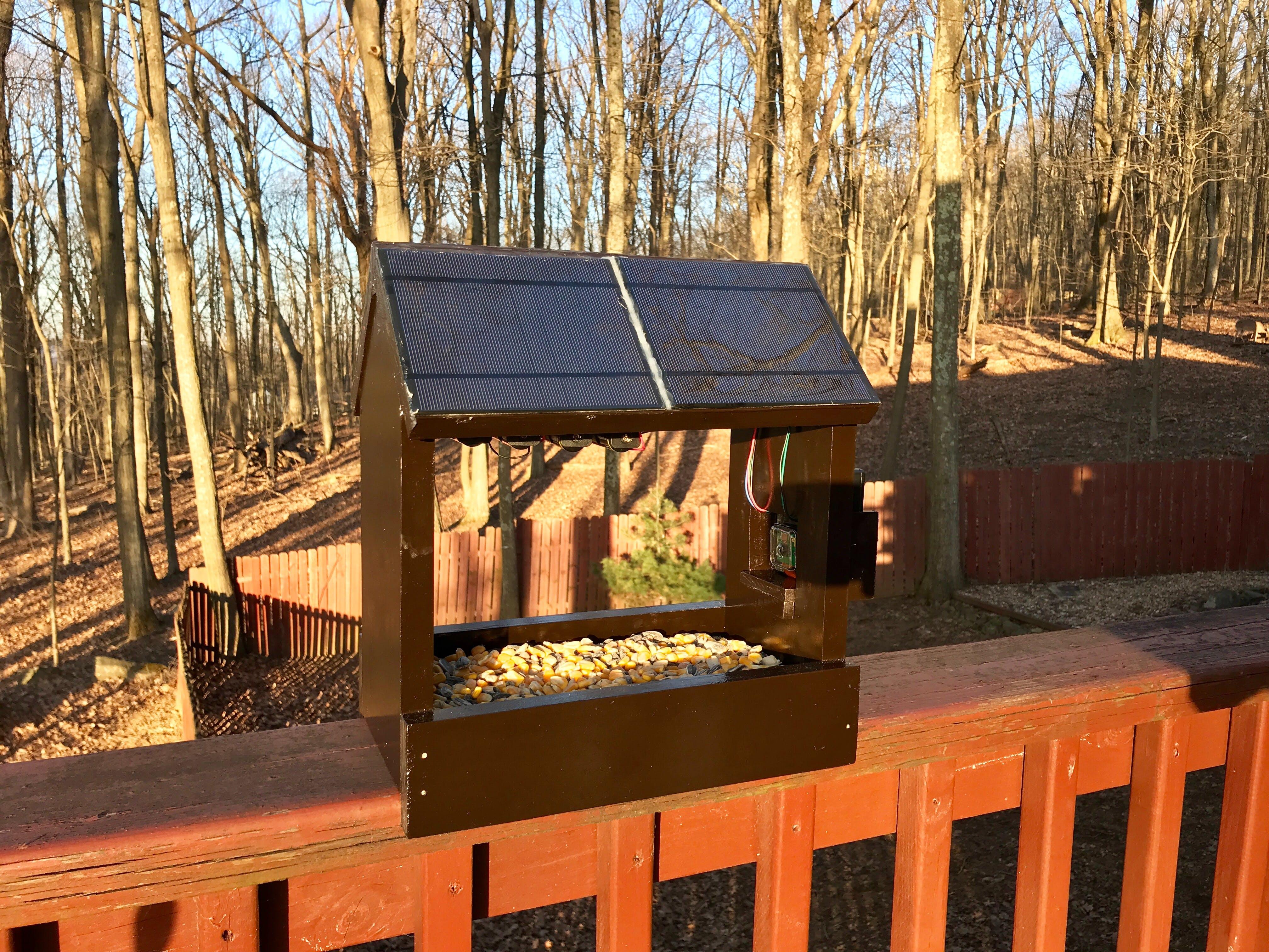Solar-Powered Squirrel Cam (Pi Zero W)