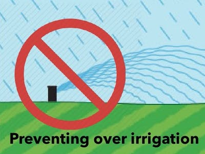 Conserving Water by Preventing Over Irrigation