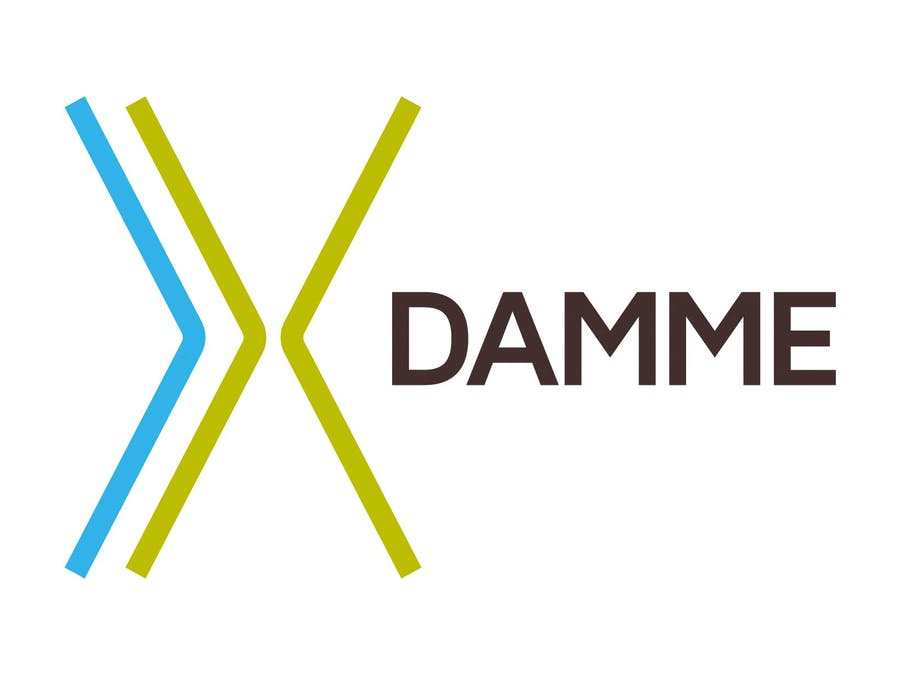 Damme, a City on the Way to Digitizing