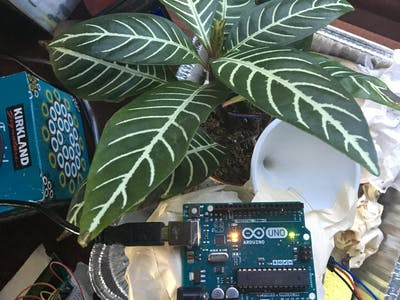 Automated Plant Watering with Voting