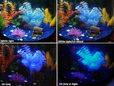 Aquarium Ambience Lighting (LED) Control