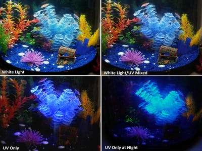 Aquarium Ambience Lighting (LED) Control