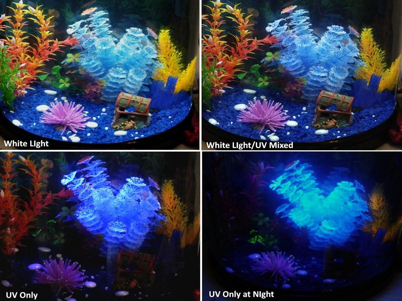 Aquarium Ambience Lighting Led Control Ledchristmaslightingusingtransistors