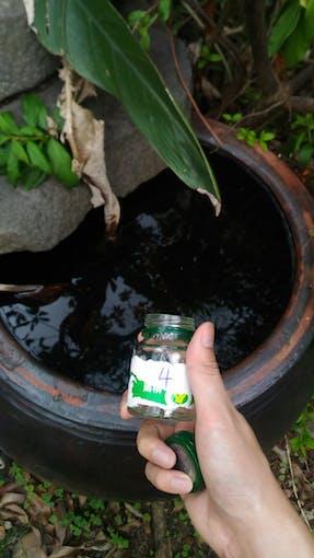 water outdoor