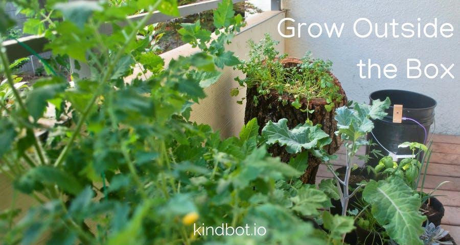Grow Anywhere!