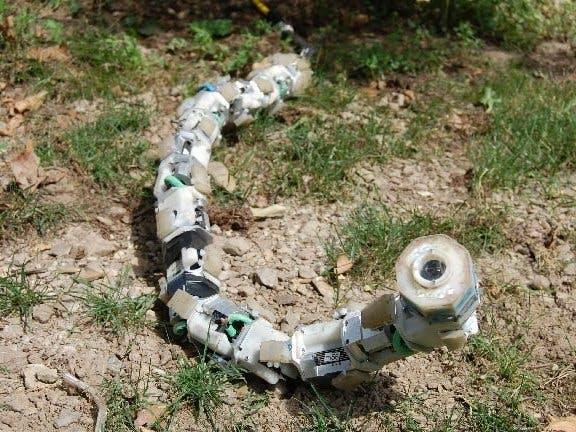 Robot snake xpchxmqlnl