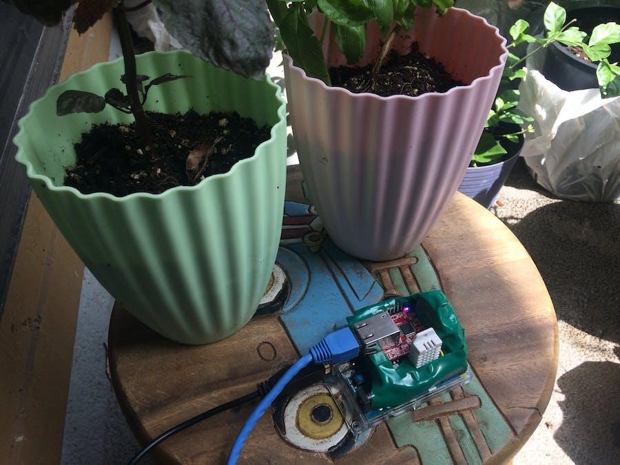 An Urban Garden Monitor